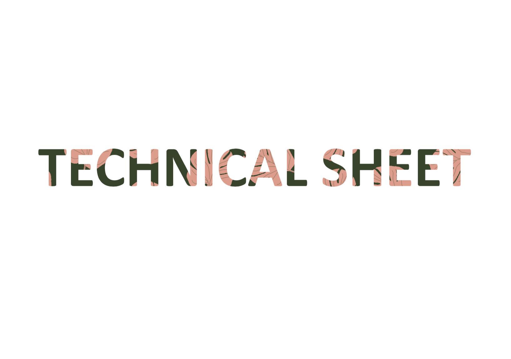 Andrea Lorenzo | Bershka | Technical